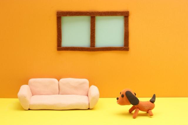 注文住宅でペットが快適に暮らせる工夫をご紹介します!